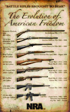 2a244ded257a The 2nd Amendment. guns.